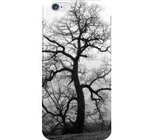 WINTER PRINCESS TREE iPhone Case/Skin