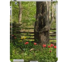 Colorful Tulips and a Rustic Fence - Enjoying the Beauty of Spring iPad Case/Skin