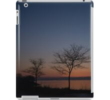 Pink and Blue Peace iPad Case/Skin