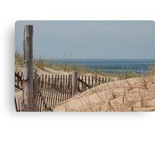 Over the dunes Canvas Print
