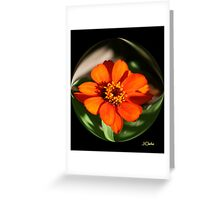 ORANGE FLOWER IN A BUBBLE Greeting Card
