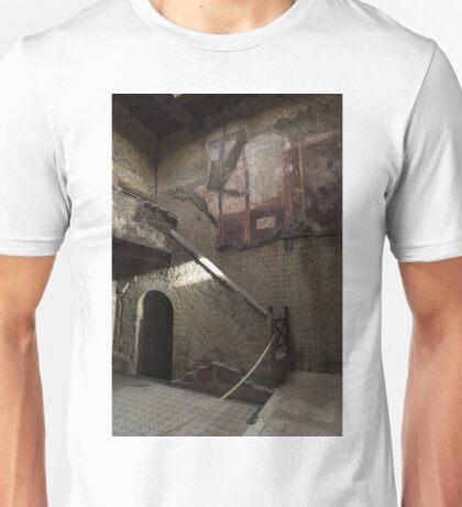 Herculaneum House Wall Art - Murals, Mosaics and Arches Unisex T-Shirt