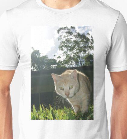 Ringo the Cat Unisex T-Shirt
