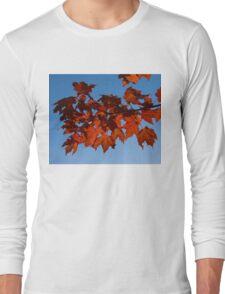 Canadian Fall Colour Long Sleeve T-Shirt
