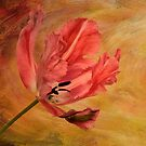 Tulip In Flames by Lois  Bryan