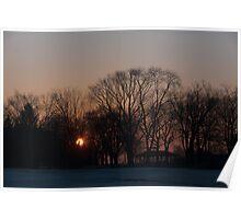 Sunrise Walk Through the Park Poster