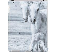 Frolic 1 iPad Case/Skin