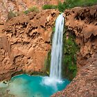 Mooney Falls by algill