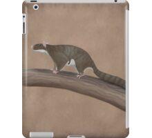 Volaticotherium antiquum - extinct gliding mammal iPad Case/Skin