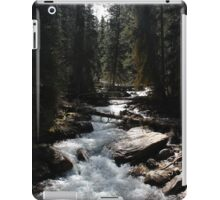 Alberta Forest iPad Case/Skin