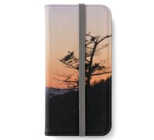 Hillside Tree Over Puget Sound iPhone Wallet/Case/Skin