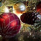 Merry Christmas to You by Lucinda Walter
