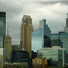 Minneapolis Skyline by Lucinda Walter