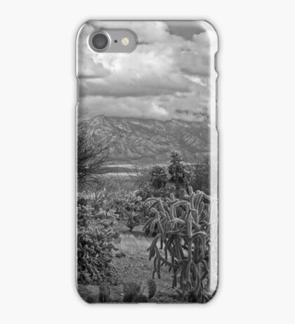 The Desert Floor ~ Snow Covered Mountains ~ Just Another Winter Day in the Desert Southwest iPhone Case/Skin
