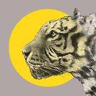 Wild Tiger by Eric Fan