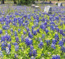 Broad Branch Cemetery Blue Sticker