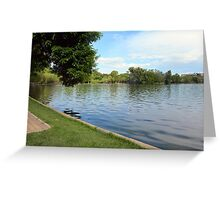 Natural background, trees and vegetation by the lake. Greeting Card