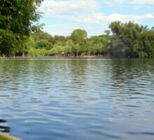 Natural background, trees and vegetation by the lake. Sticker
