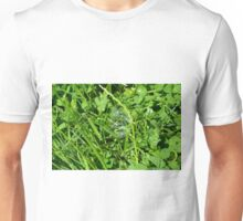 Soap bubble in the grass. Unisex T-Shirt