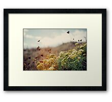 Meadow of Wildflowers Framed Print