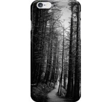 Path to the Light iPhone Case/Skin