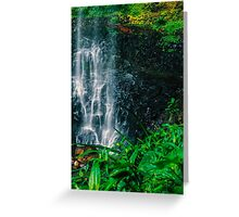 Purlingbrook Falls in Springbrook Greeting Card