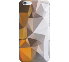Into the Fire (Orange Poly) iPhone Case/Skin