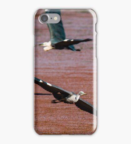 Flying Egrets iPhone Case/Skin