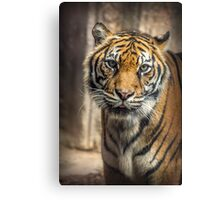 I want to dine with you Canvas Print