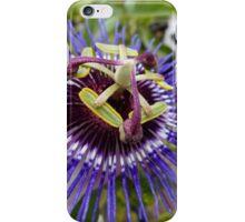 Passion Flower Purple  iPhone Case/Skin