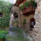 The stone village by annalisa bianchetti