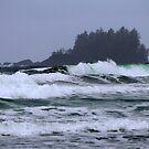 Storm Chesterman Beach Tofino BC by TerrillWelch
