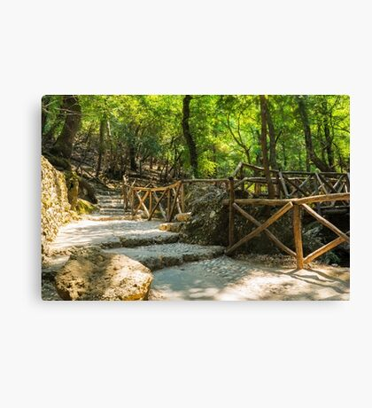 The Valley of the Butterflies Rhodes Canvas Print