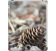Fallen Arches iPad Case/Skin
