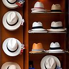Hats Off! by phil decocco