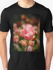 Tulips at Eden T-Shirt