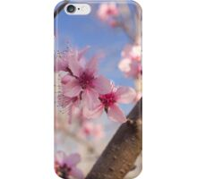 Peach Blossoms in Tennessee iPhone Case/Skin