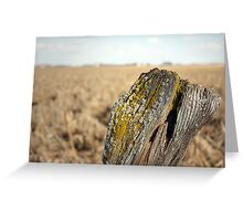 Old Post Fence Greeting Card