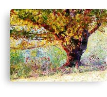 Casually Colorful Canvas Print