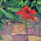 Sidi Bouzid Hibiscus by Amanda Burns-Elhassouni