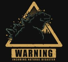 Incoming Natural Disaster! by Brandon Wilhelm