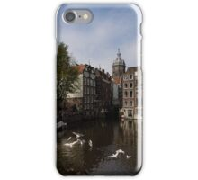 Amsterdam - Noisy Seagull Commotion on the Canal  iPhone Case/Skin