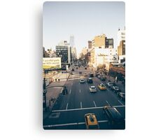 More Highline Views Canvas Print