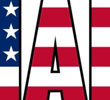 Miami American Flag Sticker