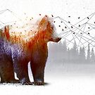 A Wilderness Within / Bear by soaringanchor
