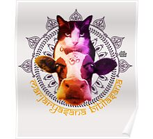 Cat Cow Energy Poster