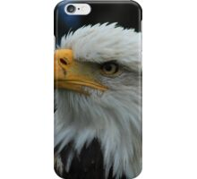 American Bald Eagle With Turned Head iPhone Case/Skin