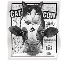 Cat Cow Energy Show Flyer Poster