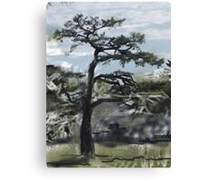 Japanese Tree Canvas Print