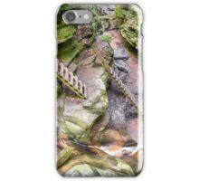 Trail Ladders in Bear Hollow iPhone Case/Skin